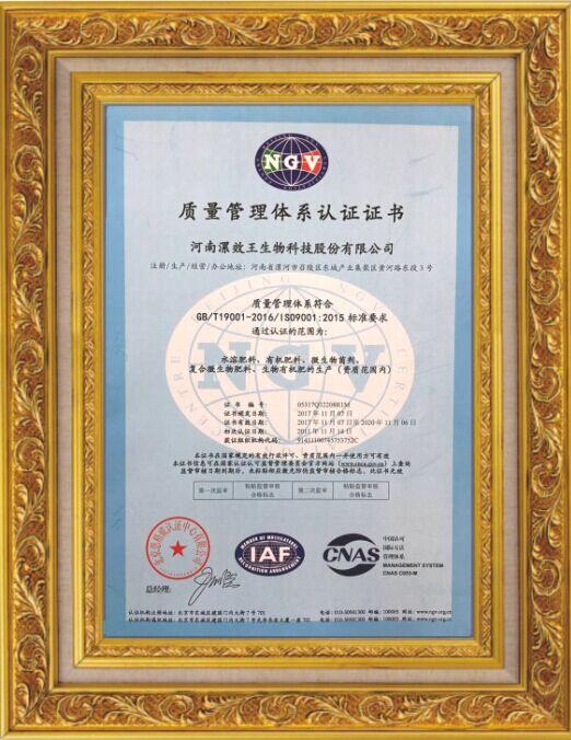 通过国际质量管理体系认证